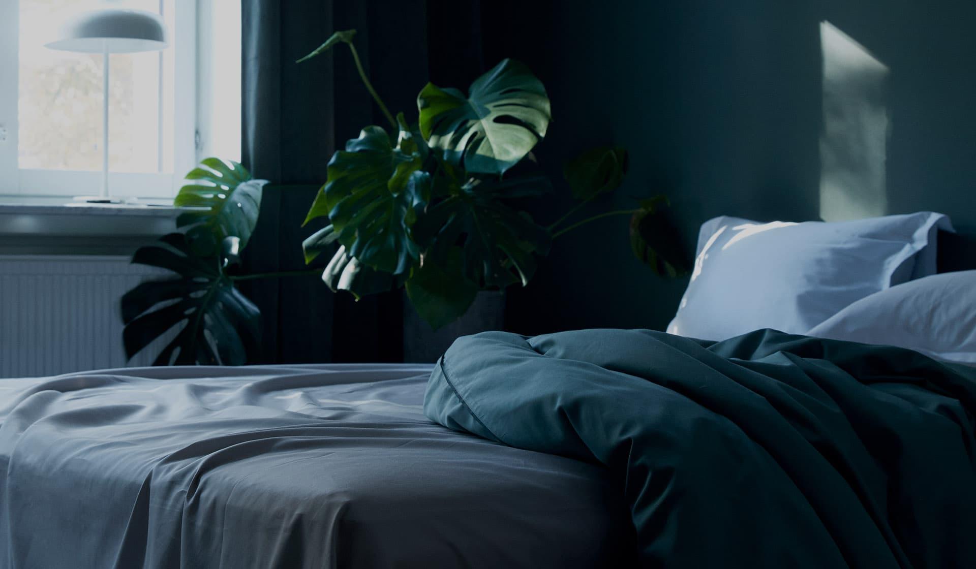Bed sheets online from Alva