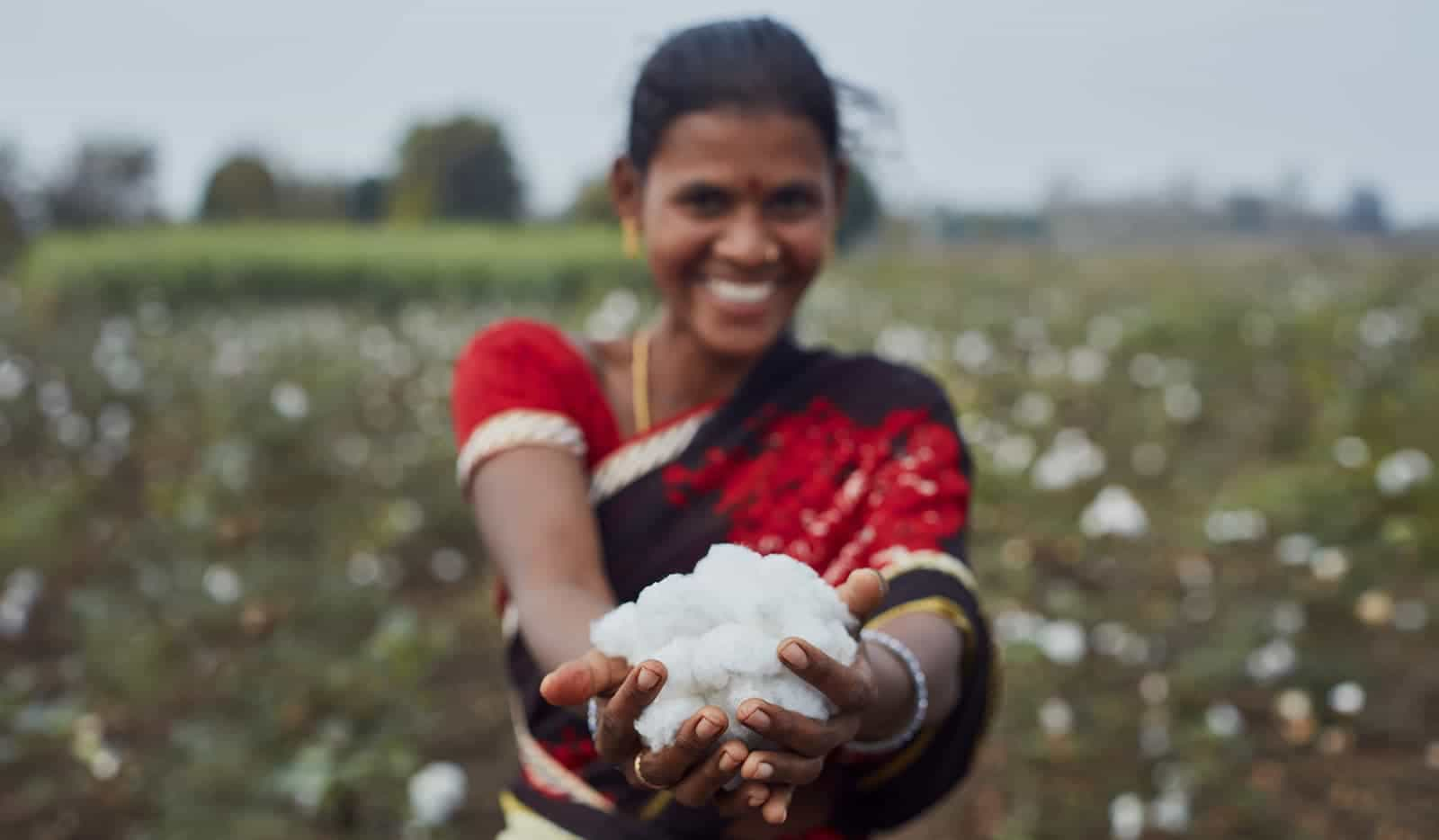 Organic and Fairtrade cotton from India